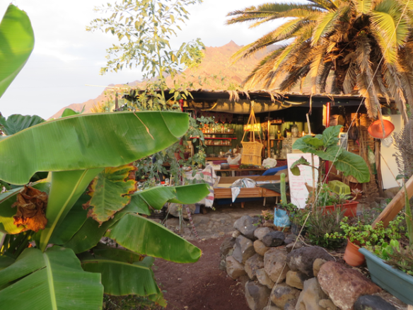 Permaculture farm for sale Tenerife